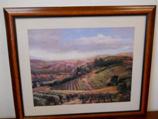 Art Print 13 - Vineard - Used