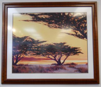 Art Print 47 - African Trees - Used